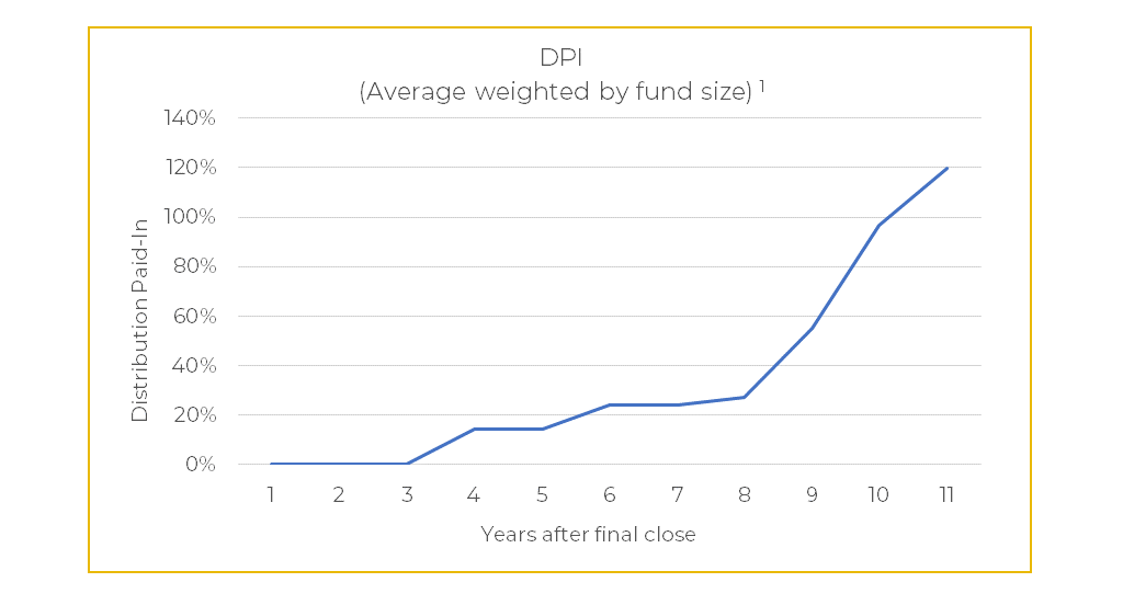 INVESTMENT PERFORMANCE - DPI